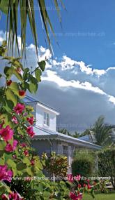 Guadeloupe - St Rose