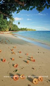Törn Tahiti - Insel Huahine