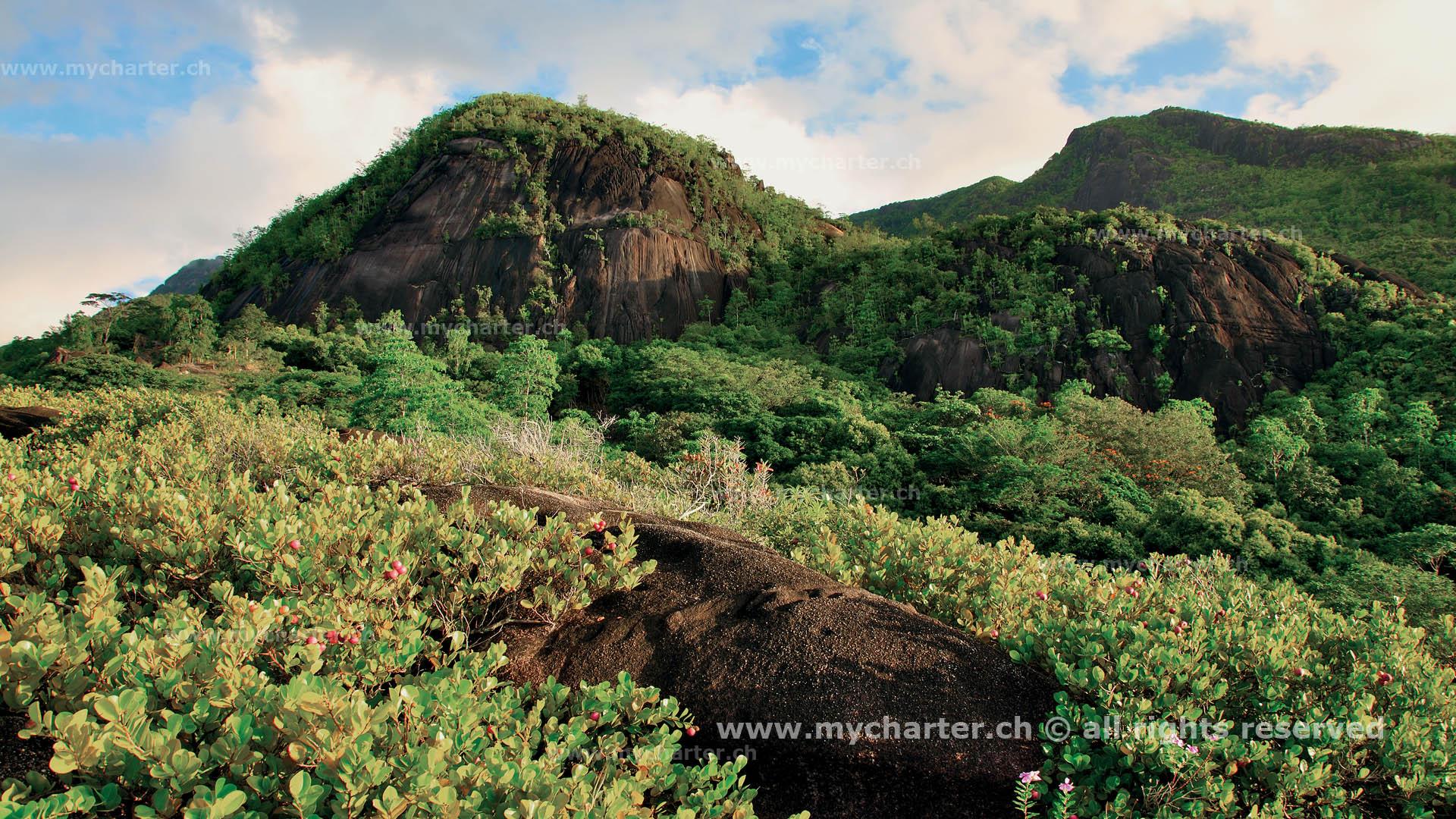 Seychellen - Anse Major